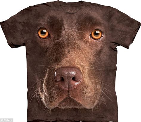 T Shirt Kaos 3d Pria Febuari 2 Light Abu Tua Biru Hijau Tua don t worry they won t bite 3d t shirt craze starring dogs cats and even raccoons look