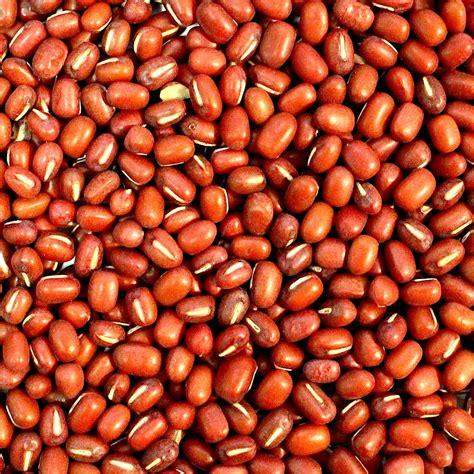 Adzuki Bean 100 Gr adzuki beans societa cofica