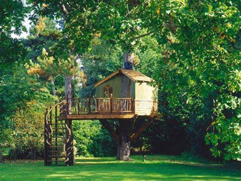 beautiful amazon tree houses