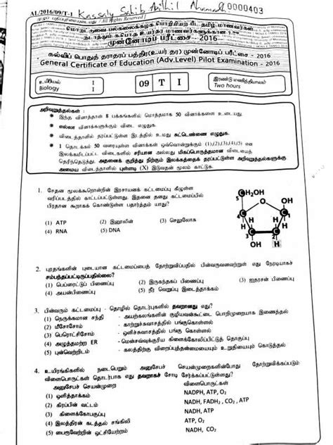 gce al government model papers and term papers sleas exam past papers in tamil masturbation at home