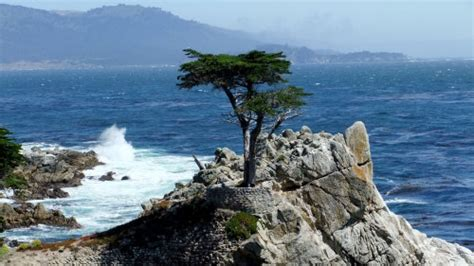 Pch San Francisco - pacific coast highway to monterey carmel by the sea san francisco wotif