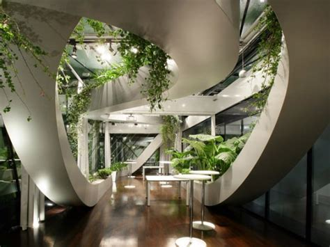 home designs and decor beautiful amazing indoor plants indoor garden