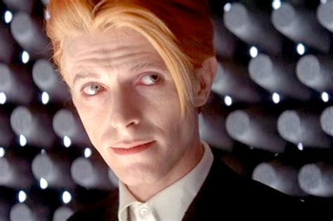 david bowie the who fell to earth multilingual edition books david bowie replaces himself atop uk album chart rihanna