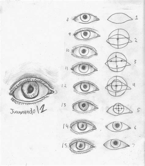 imagenes de ojos alegres para dibujar dibujar ojos humanos paso a paso buscar con google