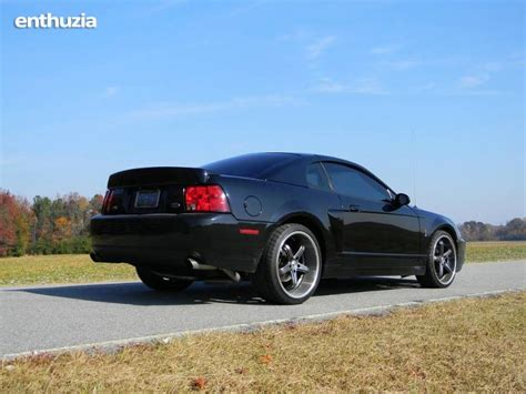 2004 mustang cobra for sale 2004 ford mustang svt cobra for sale in california