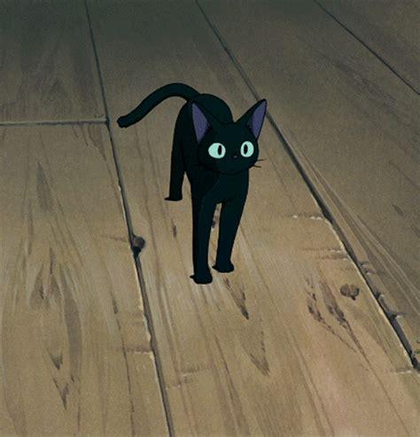 ghibli cat film kiki s delivery service gifs wifflegif