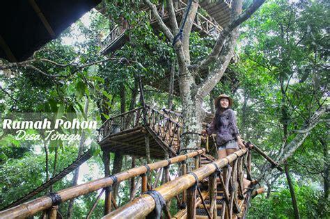 Tempat Sah C 3 rumah pohon temega tempat menarik di bali