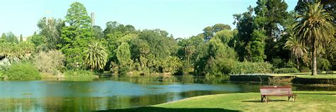 Melbourne Botanical Gardens Parking Melbourne Botanical Gardens Parking Royal Botanic Gardens Lonely Planet Big4 Parks In Greater