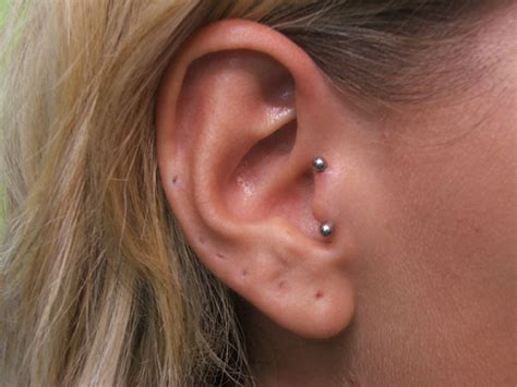 tragus piercing vertical tragus piercing pain jewelry pictures body
