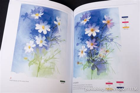 libro you can paint vibrant book review you can paint vibrant watercolors in twelve