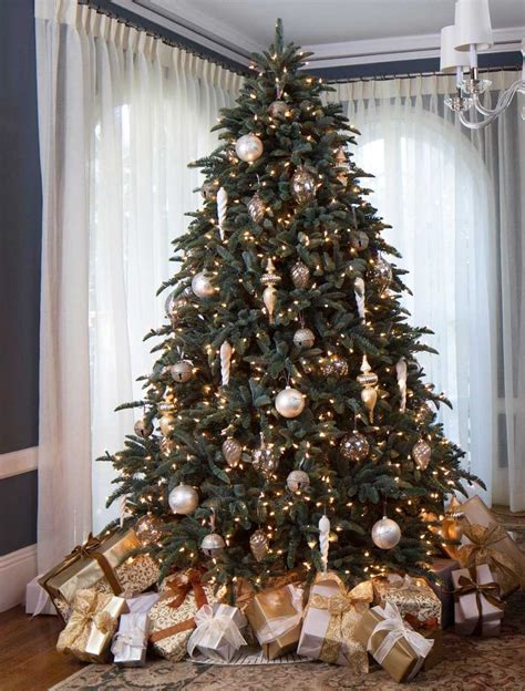 fir christmas tree ideas best 25 noble fir tree ideas on fraser fir balsam fir tree and balsam