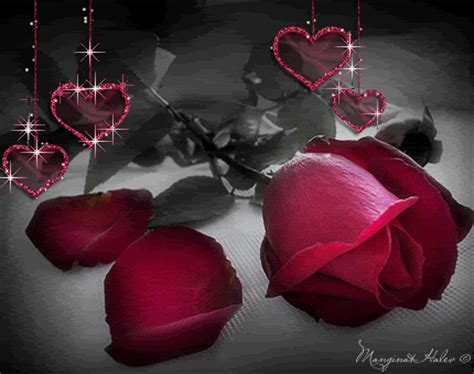 roses and hearts hearts and roses roses photo 13170779 fanpop