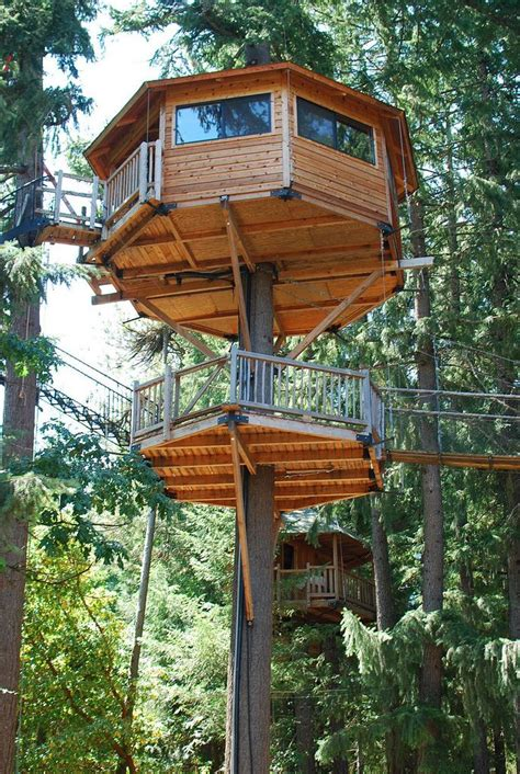 treehouse vacations everyone from oregon should take these 13 awesome vacations oregon vacation treehouses and