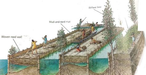 Aztec Floating Gardens by Chinas The Ingenious Floating Gardens Of The Ancient