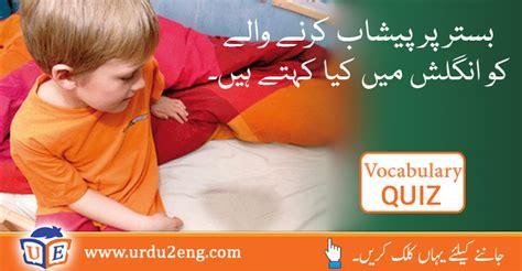Crib Meaning In Urdu by Crib Urdu Meaning