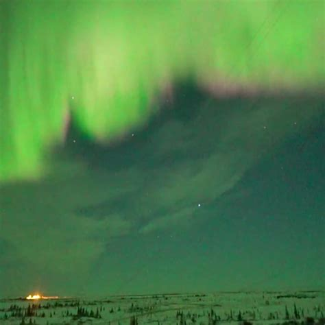 northern lights live cam notcot org
