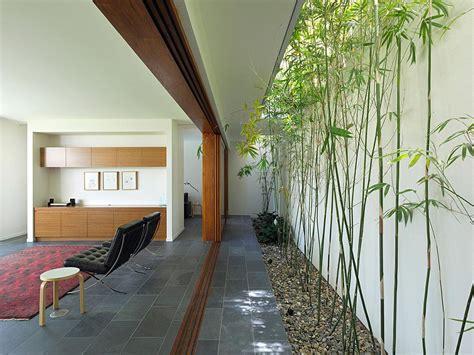 house indoor indoor garden fig tree pocket house 2 brisbane