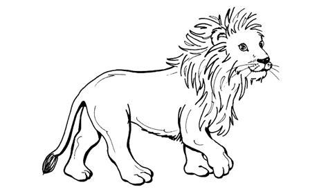 imagenes leones dibujos dibujos de leones para colorear y pintar