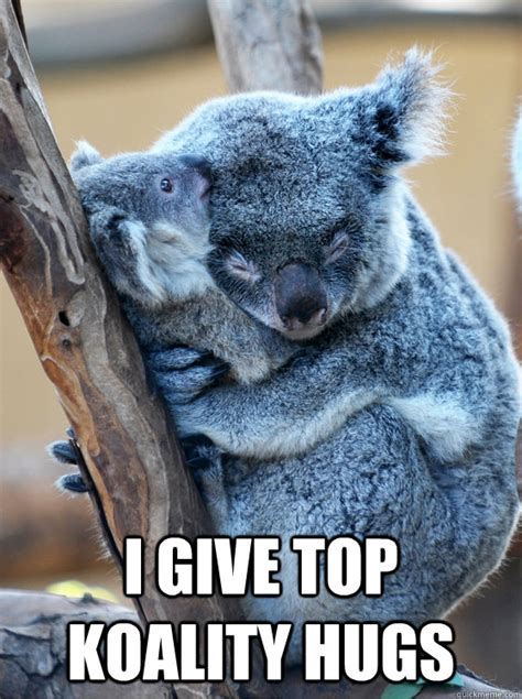 Meme Hug - i give top koality hugs top koality hugs quickmeme