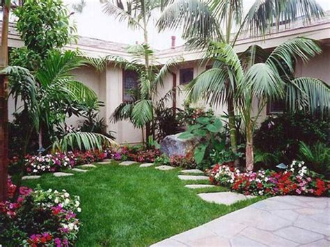 palm tree landscaping ideas simply house decorating