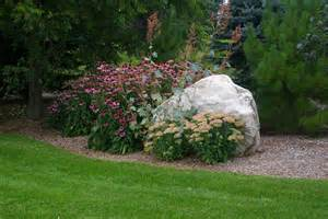for landscaping landscaping for under pine trees