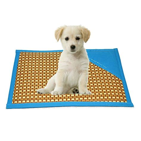 cooling pet bed best cooling dog bed dog beds and costumes