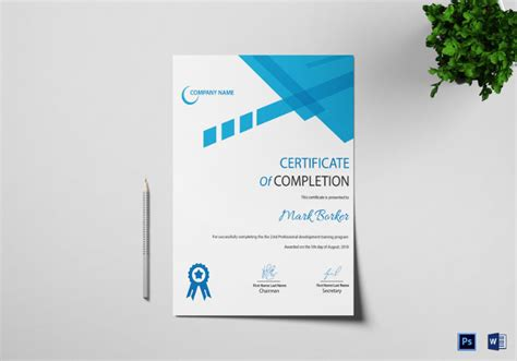 professional certificate templates for word word certificate template 51 free sles