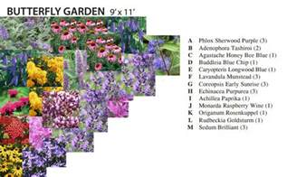 cottage garden plans free butterfly garden plan cottage garden living