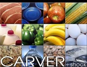 Carver Shocks Carver Shock Downloads