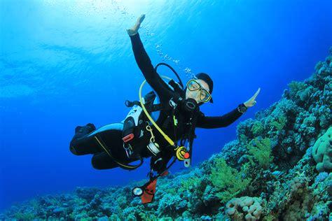 scuba dive insurance for scuba divers insurechance