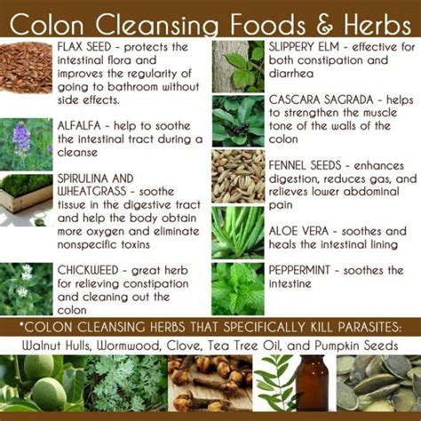 Best Way To Detox The Bowels by 11 Best Images About Colon Cleansing And Laxatives