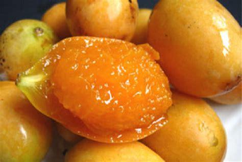 resep membuat manisan buah mangga cara membuat manisan buah gandaria resep manisan