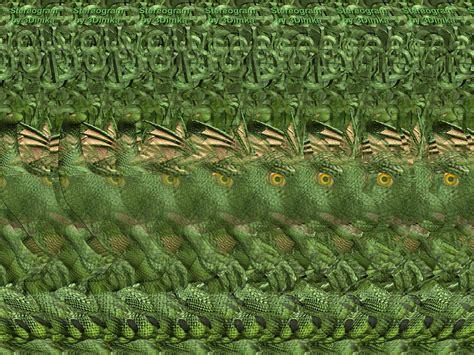 imagenes que se ven en 3d little draco stereogram images games video and