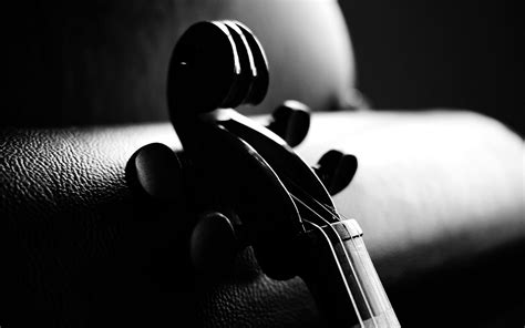 And White Black And White Violin Wallpaper 782 1920 X 1200