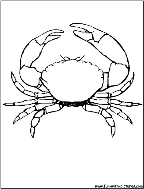 blue crab coloring page blue crab drawing sketch coloring page