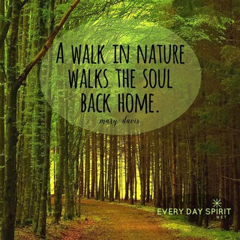 quotes about nature best 25 inspirational nature quotes ideas on