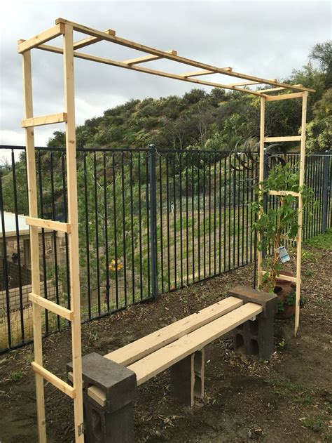 how to build a trellis 25 best plant trellis ideas on pinterest backyard