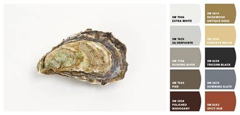 oyster shell trippaluka style