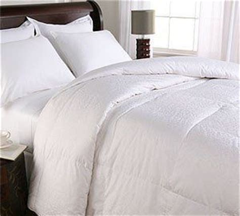 Royal Hotel Goose Pillow by 1000 Images About Home Kitchen Comforters Sets On