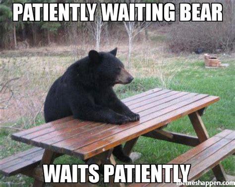 Patient Bear Meme - patiently waiting meme memes