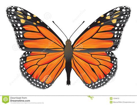 imágenes de mariposa s image gallery imagenes de una mariposa