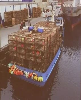 crab boat destination hearing fisherynation continuously updated