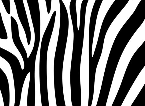 Zebra Pattern Psd | zebra stripes design psd file my free photoshop world