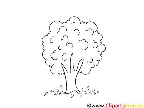 Kostenlose Vorlage Baum baum im wald herbstbilder zum ausmalen