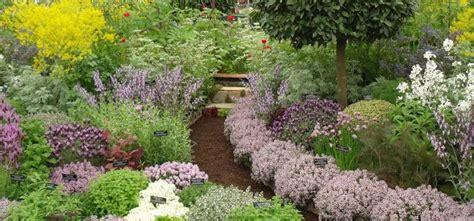 perennial herb garden layout backyard landscaping garden design ideas family food