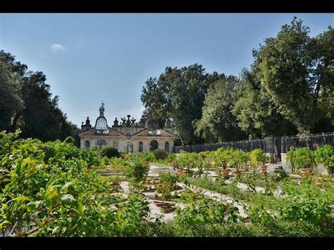 cinema giardino a galleria borghese giardino tramontana mymovies it