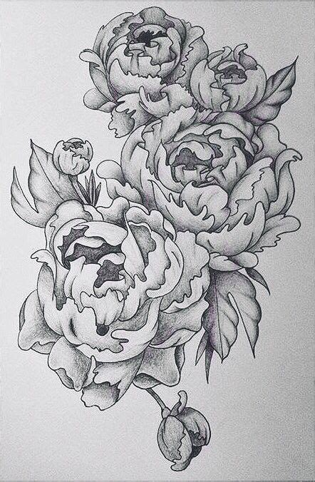 peonie tattoo peonie design in black pencil in august 2015