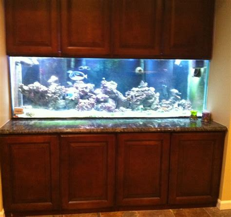 saltwater aquarium in wall 180 gallon in wall reef large reef aquarium 91g 180g my 180 gallon built in