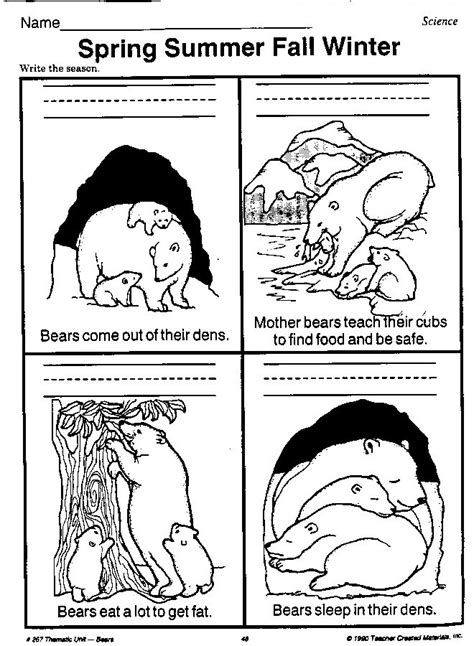 bear hibernating worksheet | Beary Bears: Teachers
