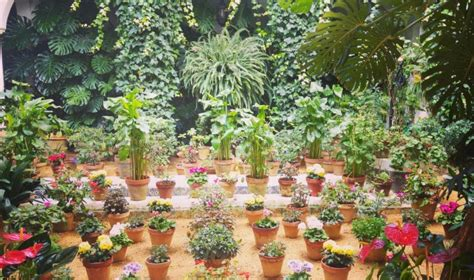 imagenes de jardines y rosas hermosos jardines